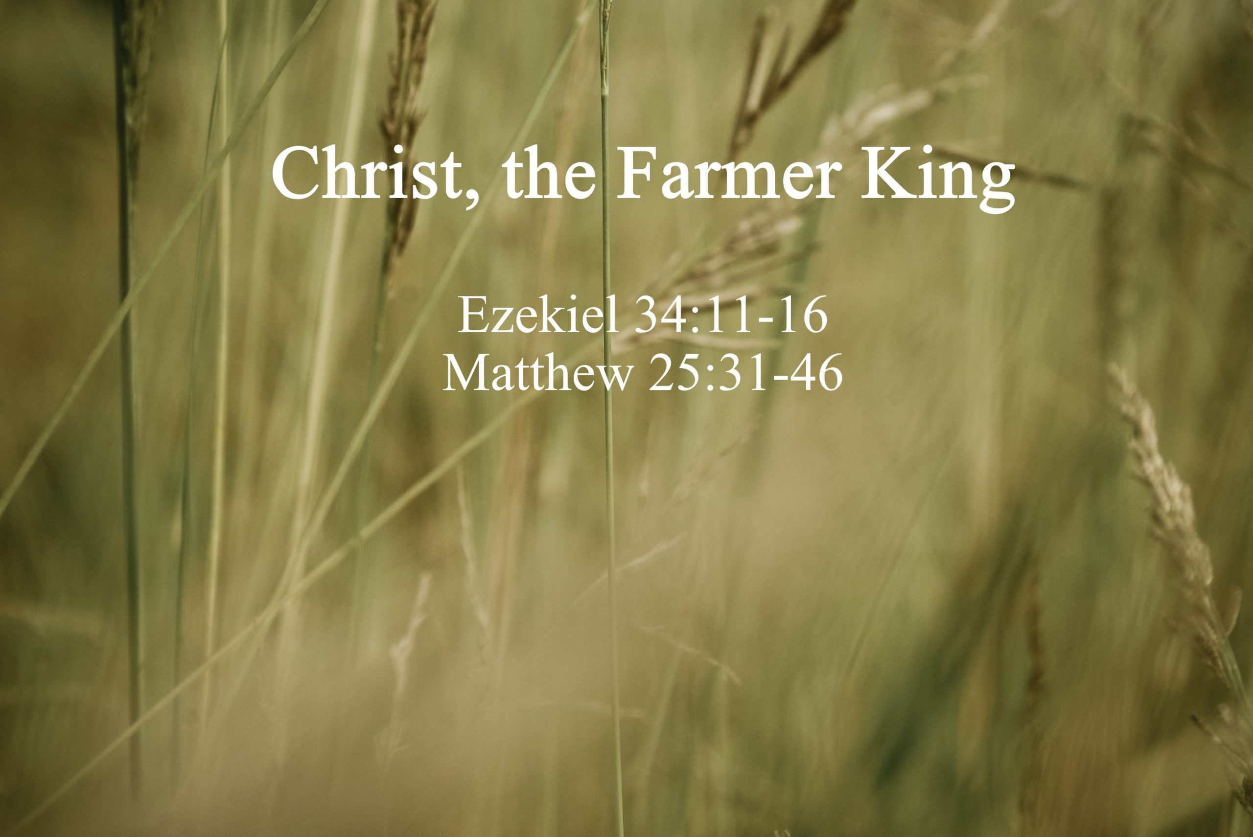 Christ, the Farmer King