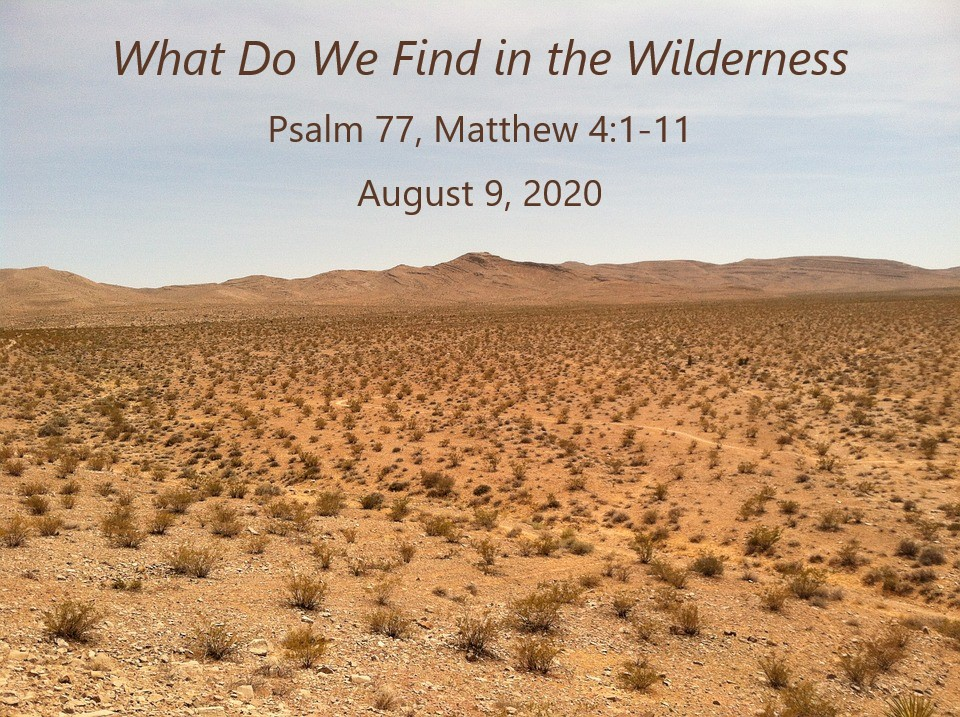What Do We Find in the Wilderness